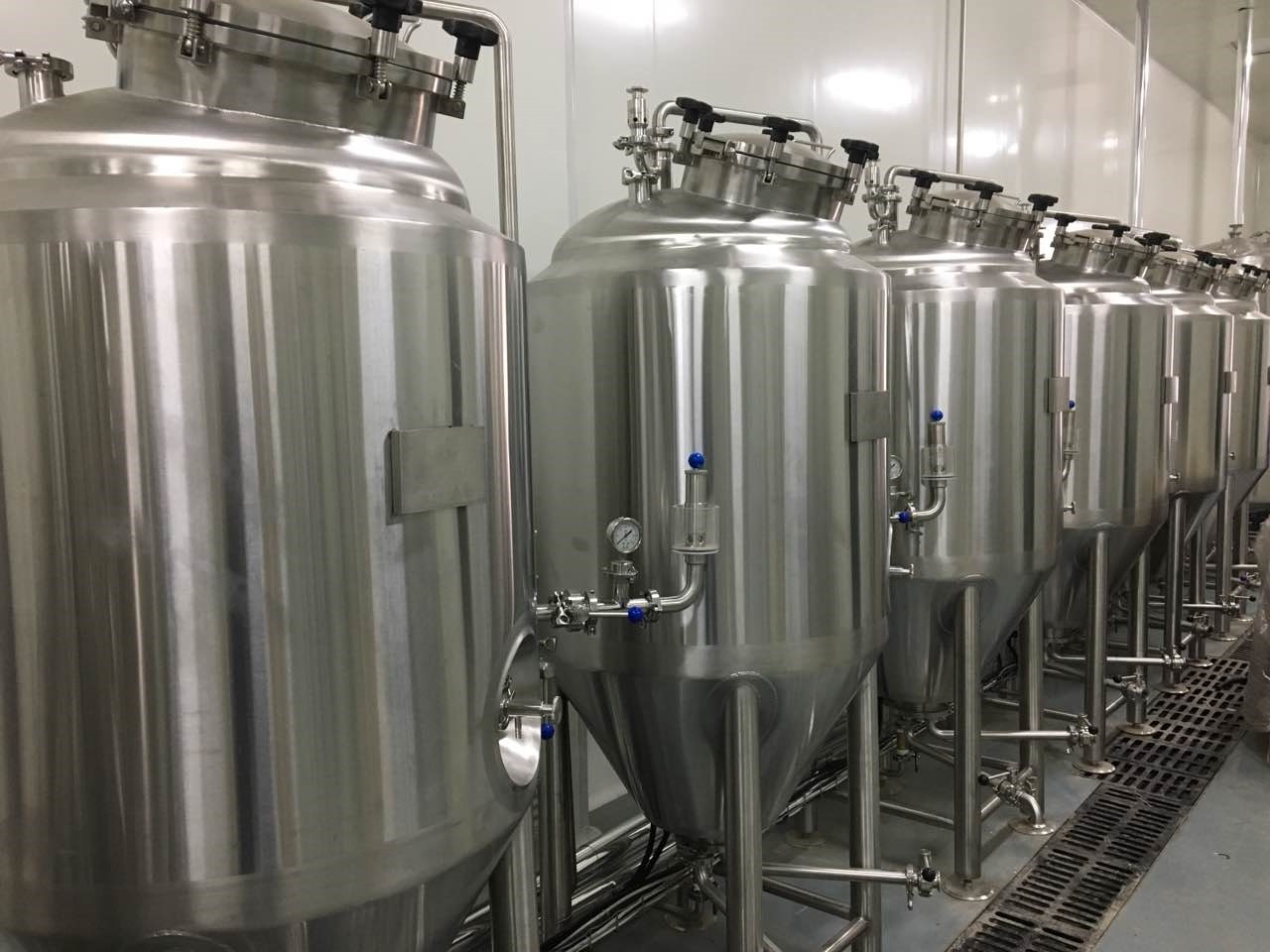 300l home Microbrewery system UK