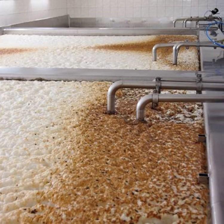 yeast in beer brewing.jpg